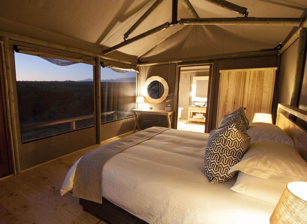 ... Hlosi Luxury Safari Tent ... & Amakhala Hlosi Game Lodge - Photos