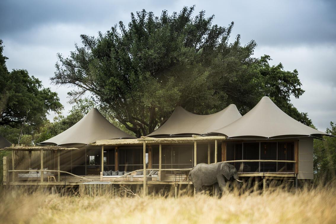 Drive- Botswana