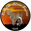 Bush Life Africa Safaris  logo