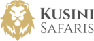 On Safari In logo