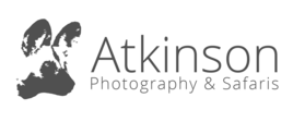 Atkinson Photography & Safaris logo