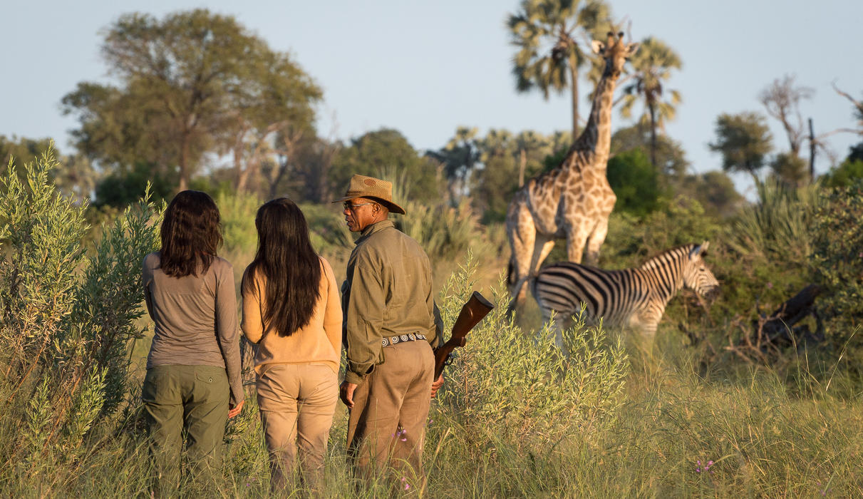 Walking safaris are available on request