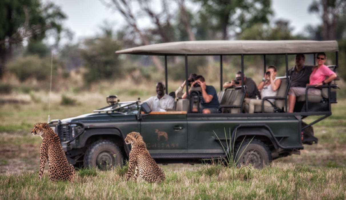 Chitabe is known for its rewarding cheetah sightings
