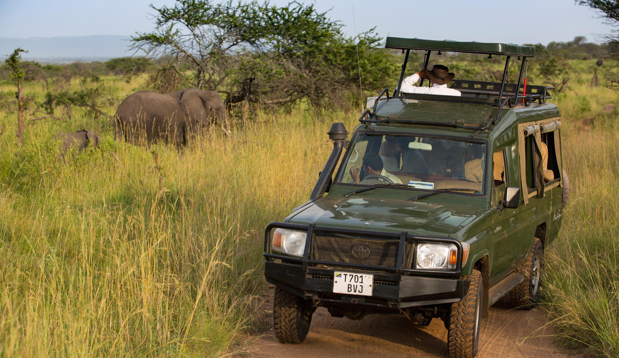 Exceptional game viewing in custom built 4x4 vehicle