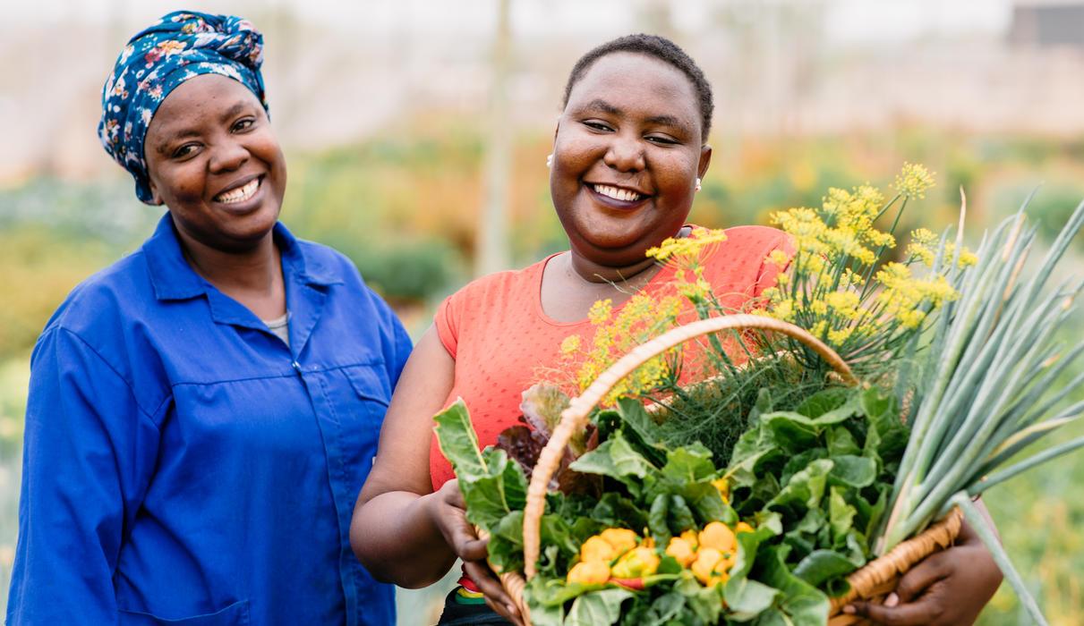 Herb & Vegetable Garden
