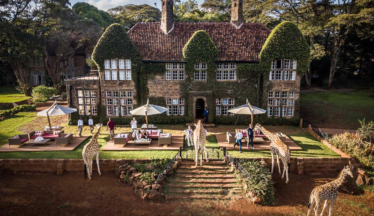 Afternoon Tea at Giraffe Manor