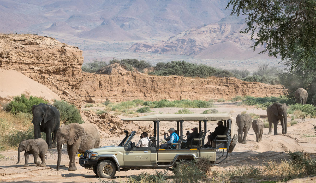 Game drive with elephant in the Huab River Valley