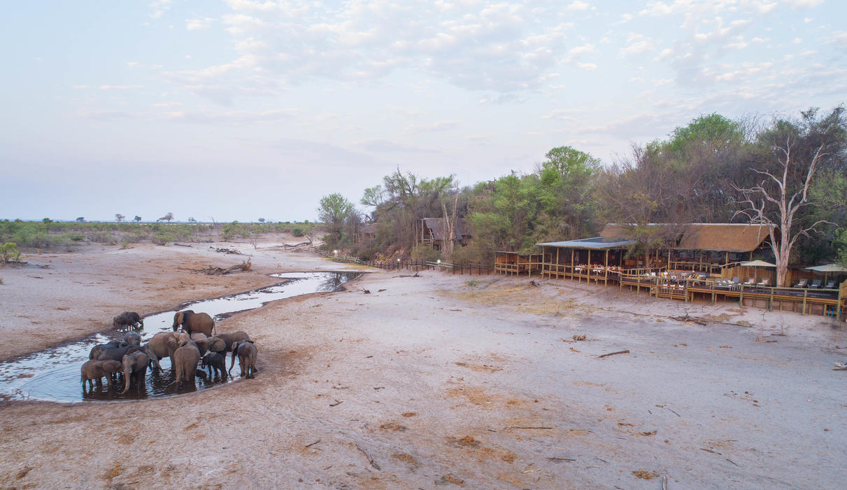 Located on the edge of the Savute Chanel offering exceptional in-lodge game viewing