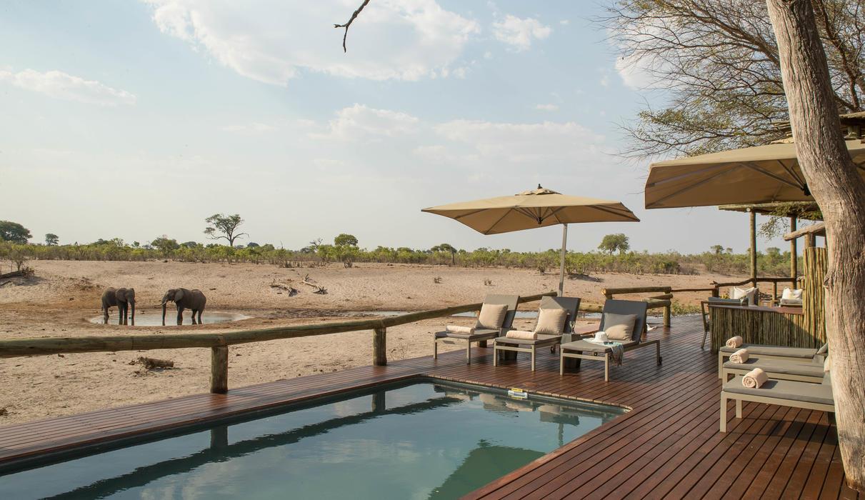 The main swimming pool at Savute Safari Lodge on the edge of the Savute Channel