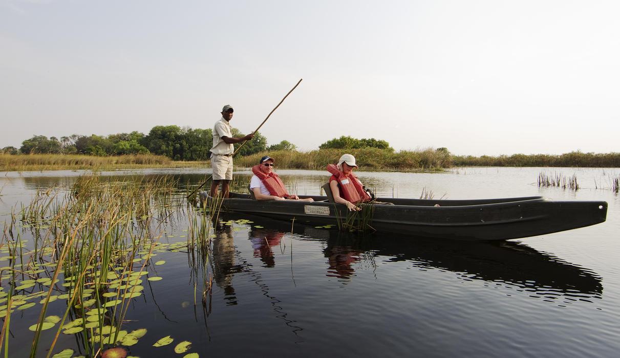 Experience the fascinating aquatic habitat of the Okavango Delta by Mokoro