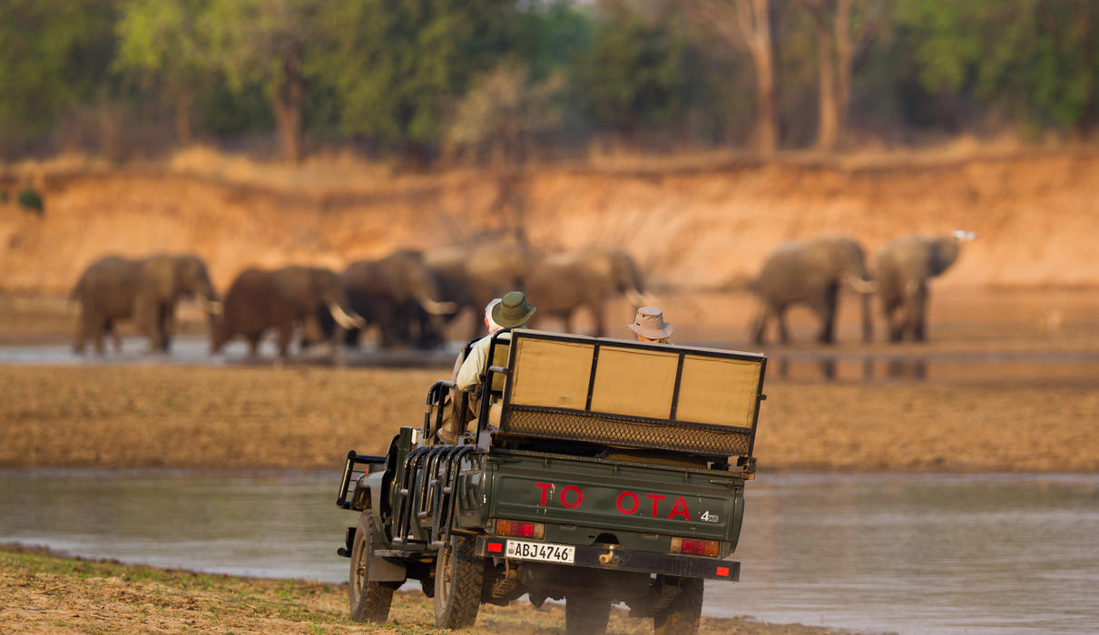 Explore the South Luangwa with our award winning guiding team