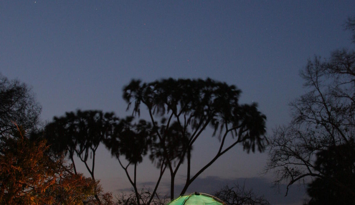 For the adventurous, book our Walking Safaris, two nights sleeping under star domed tents