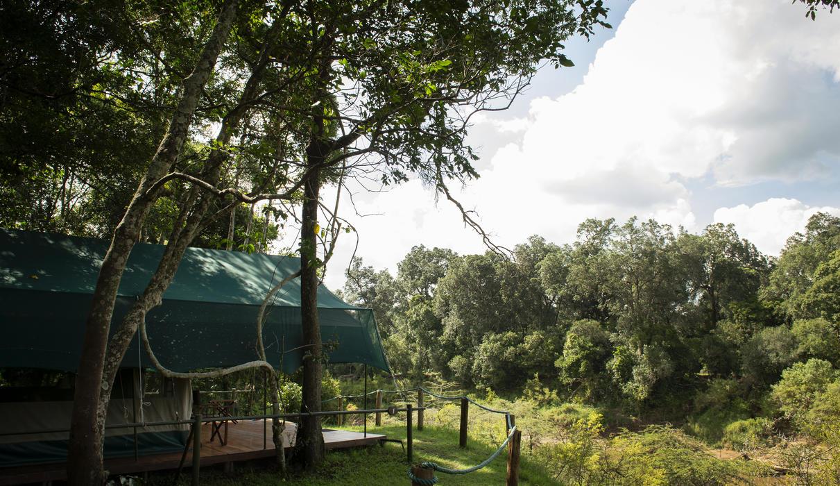 Guest tent along the Mara River