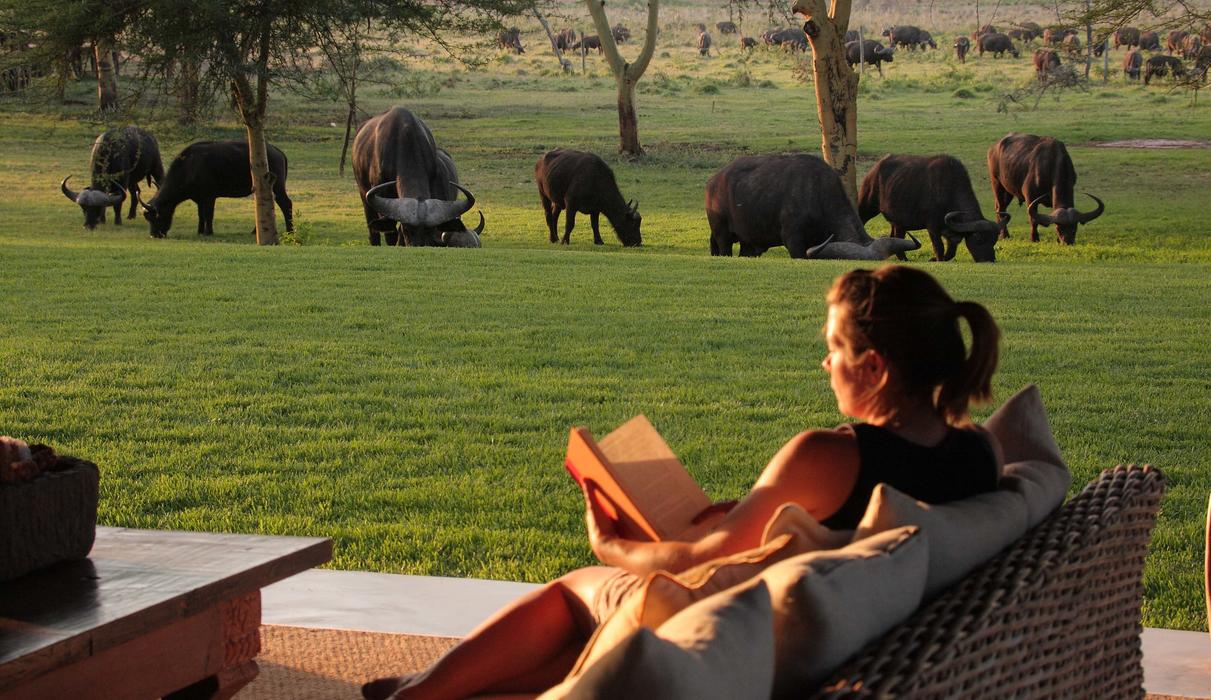 Sitting comfortably on the beautifully appointed deck of Sirikoi House, Sirikoi Cottage or any of the luxury tented rooms, an afternoon can slip by as you watch the wildlife come to you.