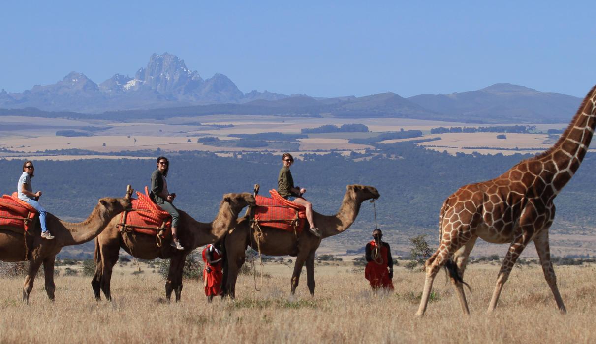 Activities - Camel Walk / Ride