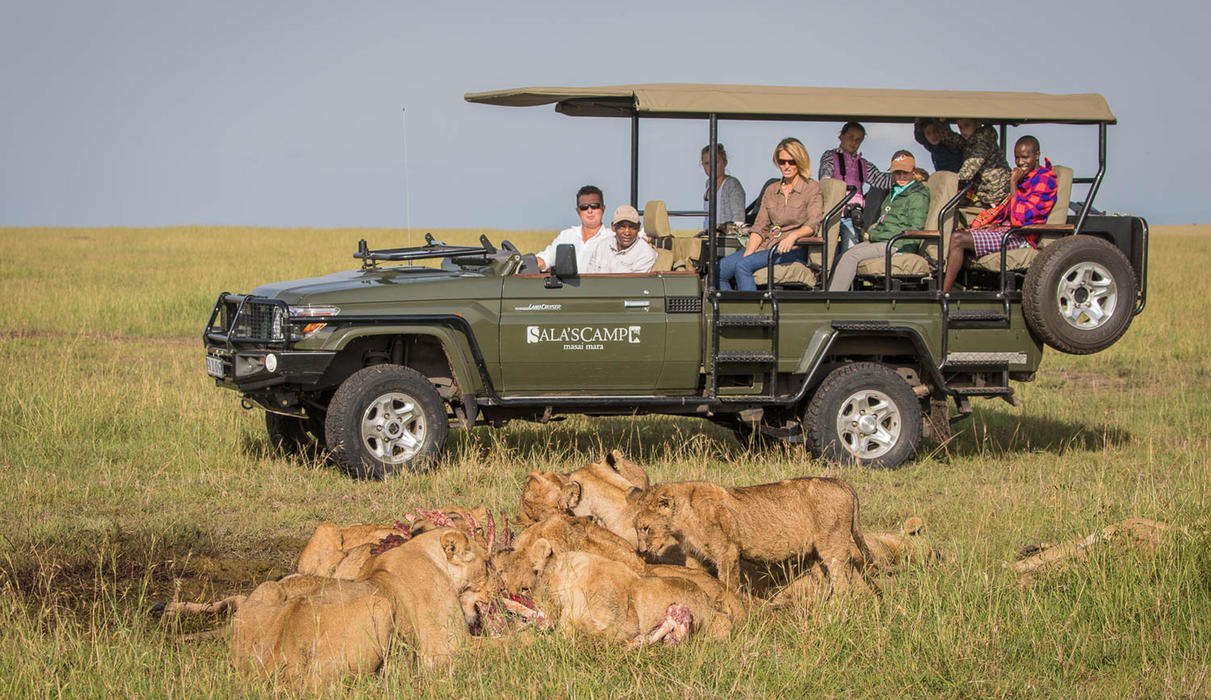 Amazing sightings during game drives