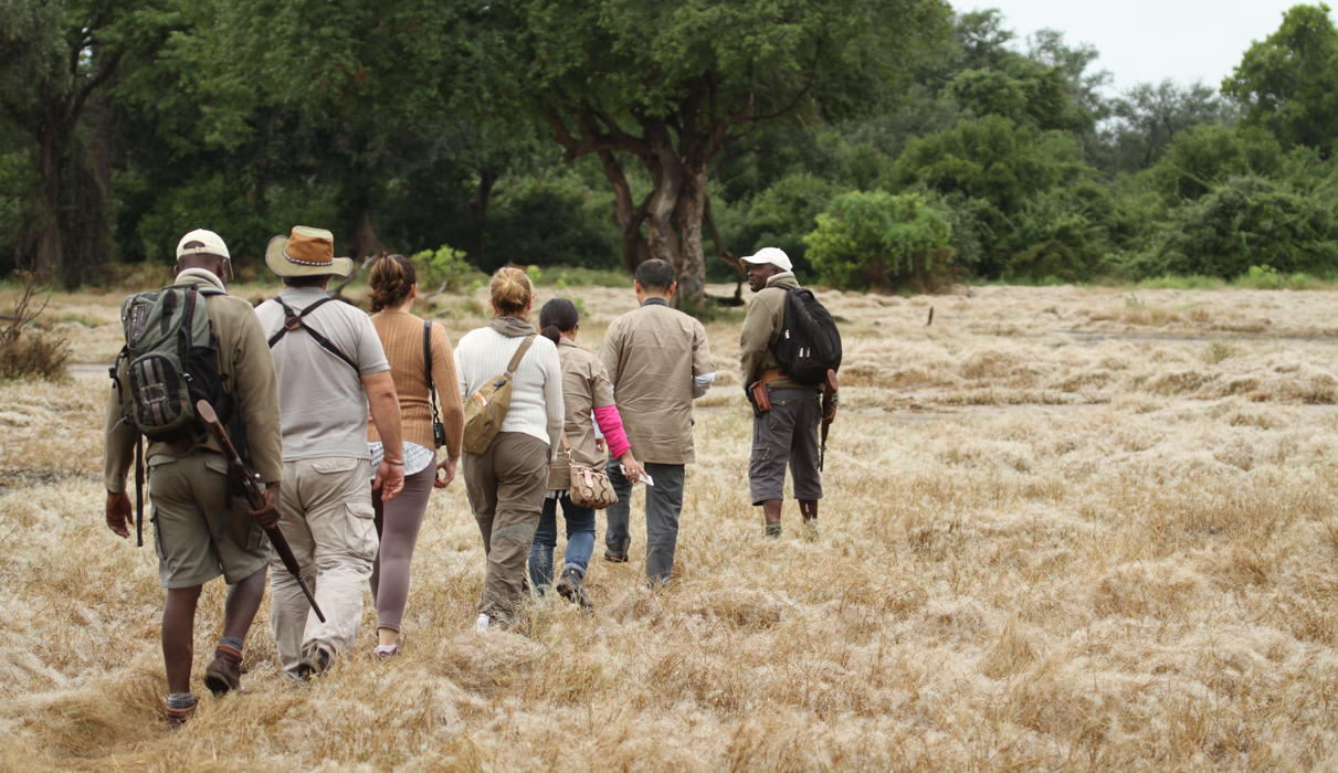 Walking safari in Mana Pools