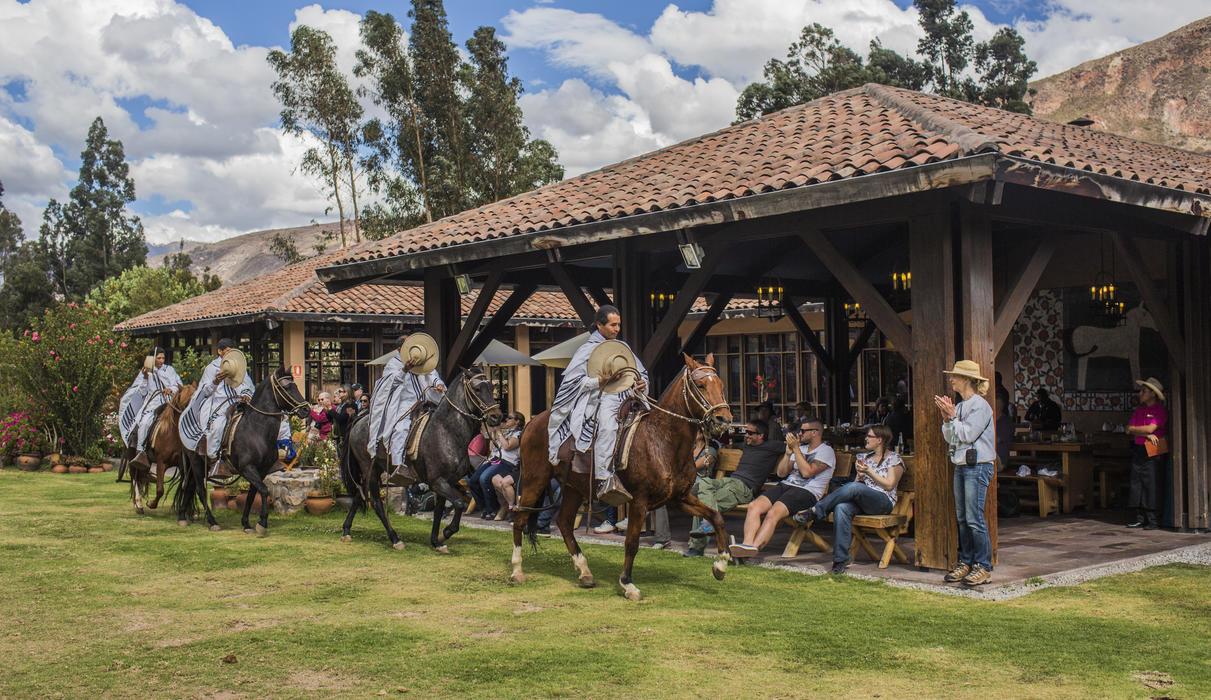 Peruvian Paso Horses  Show at Wayra