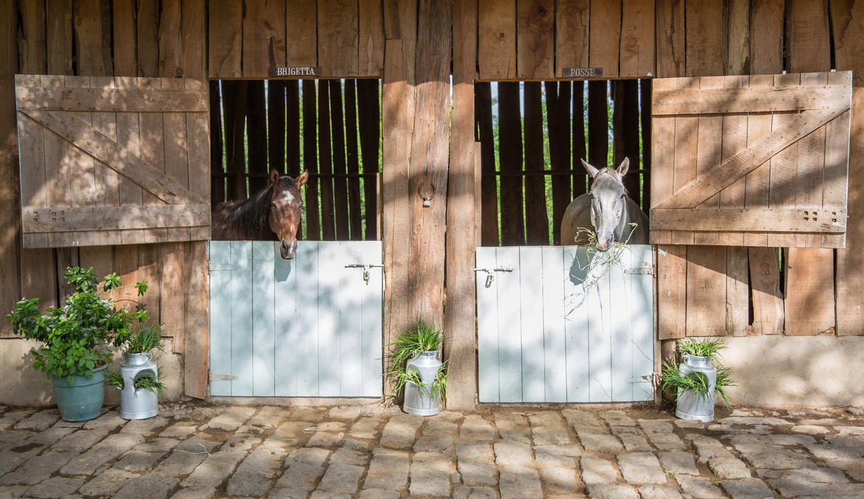 The horse stables at Solio Lodge
