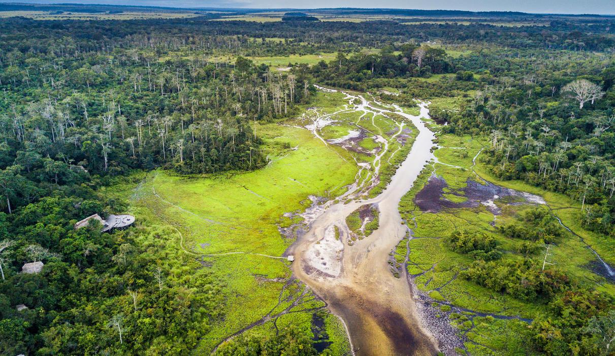 The Congo Basin is a pristine ecosystem to explore