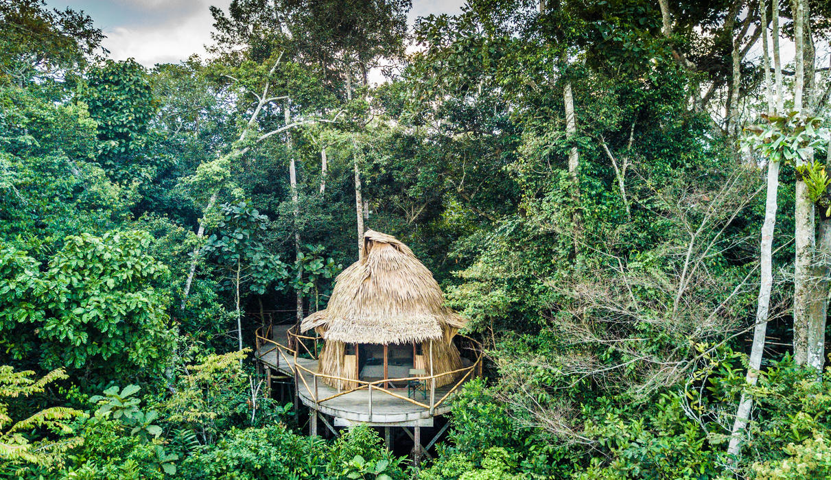 6 chalets in the tree tops overlooking the baï