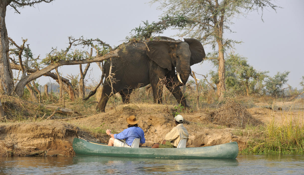 Canoeing down the magnificent Chifungulu Channel