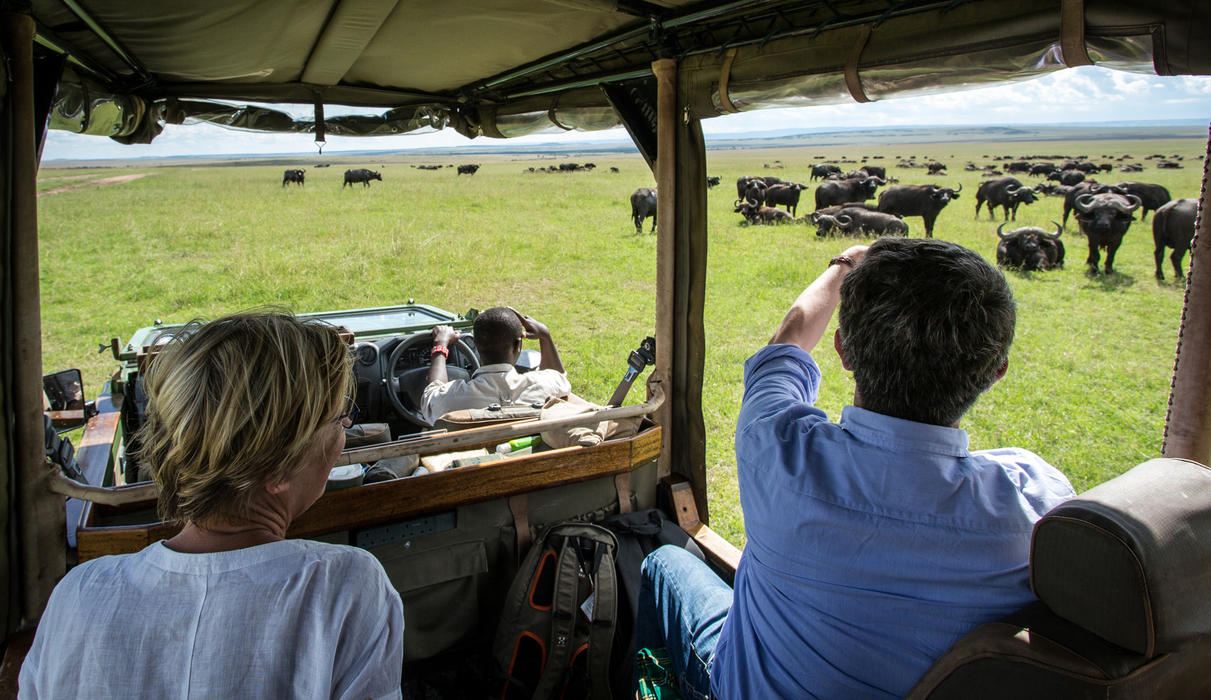 Wildlife Drive from Mara Expedition Camp