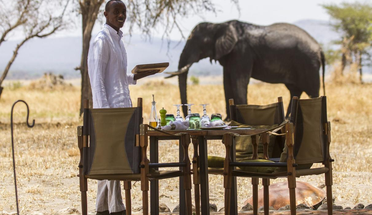 Dining with a view of the wildlife that roam the concession