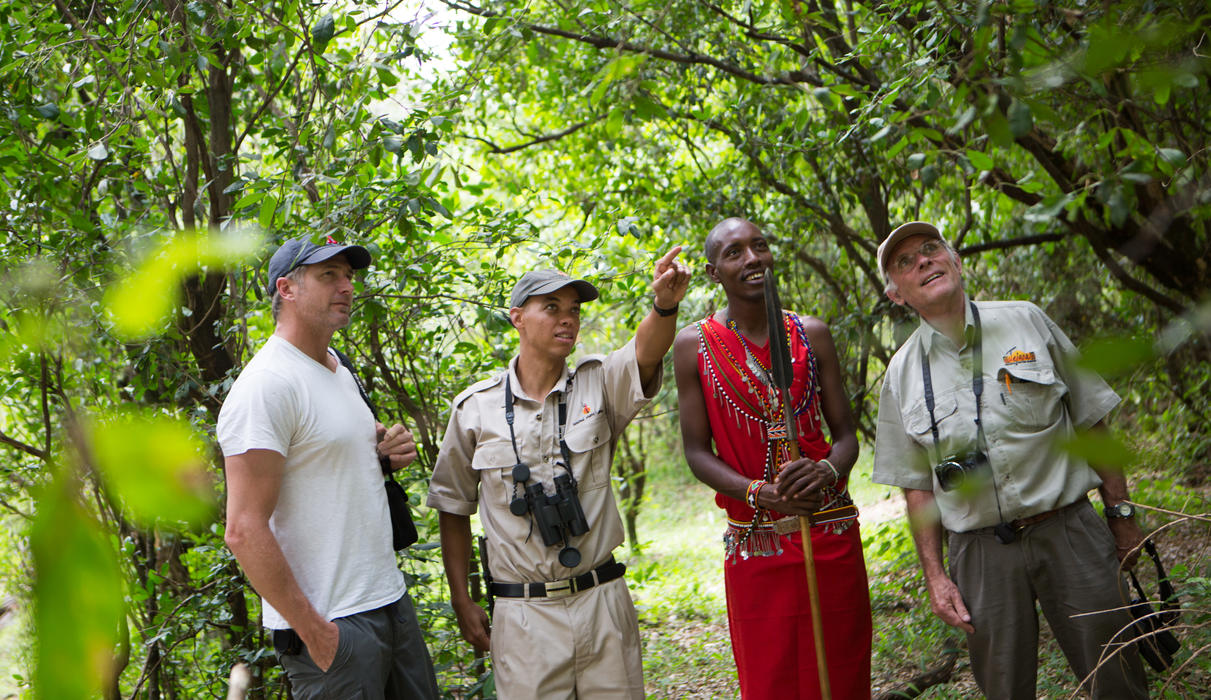 Discover the little and often unnoticed wonders on a walk with a Maasai warrior