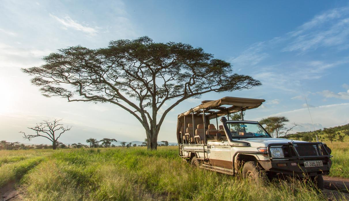 every booking is allocated a private 4x4 with an experienced Ranger and local spotter
