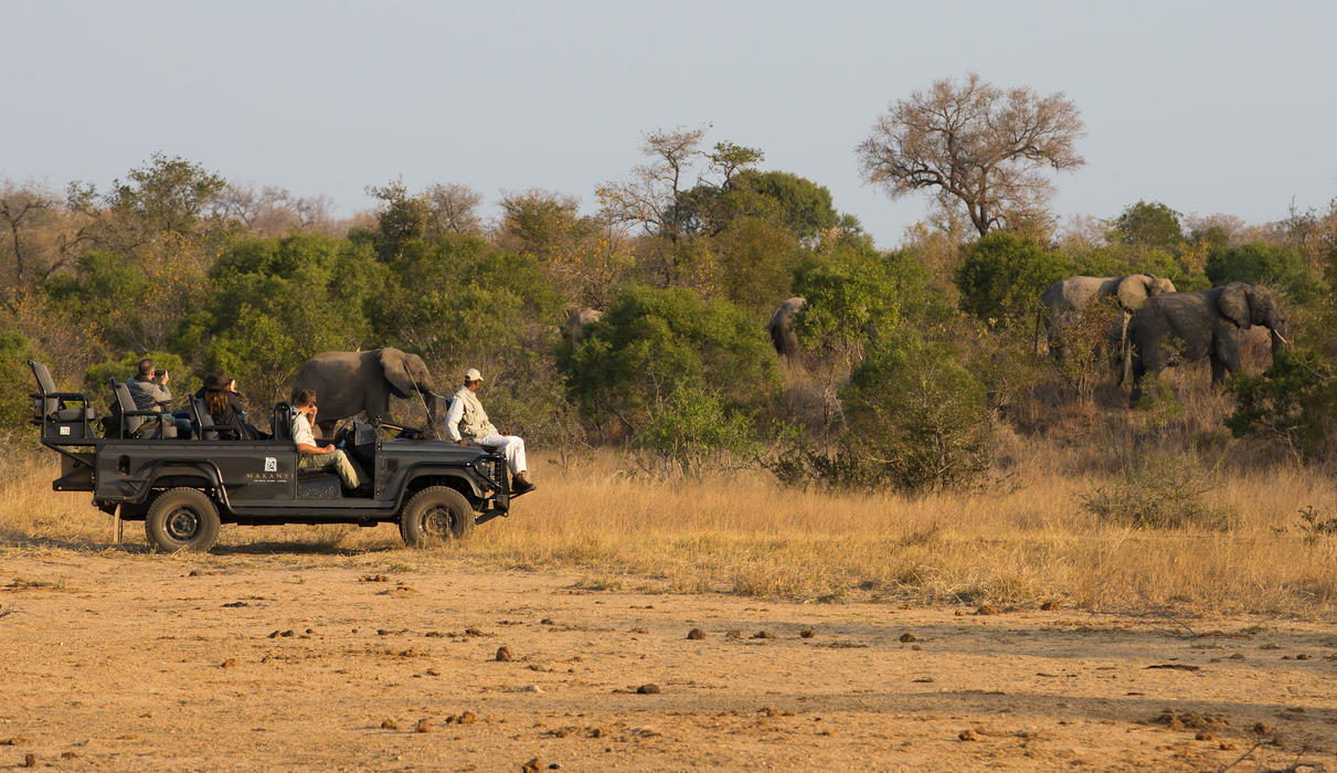 A game drive with the Elephants