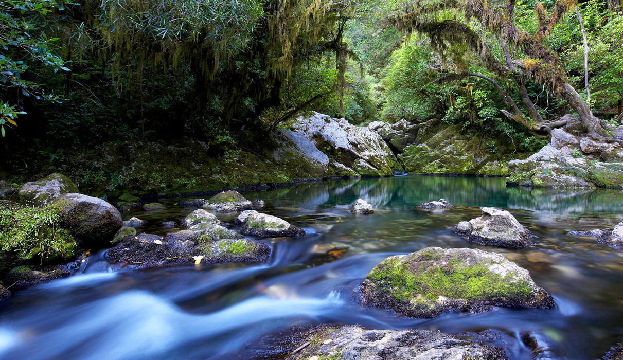 Source of the Riwaka River