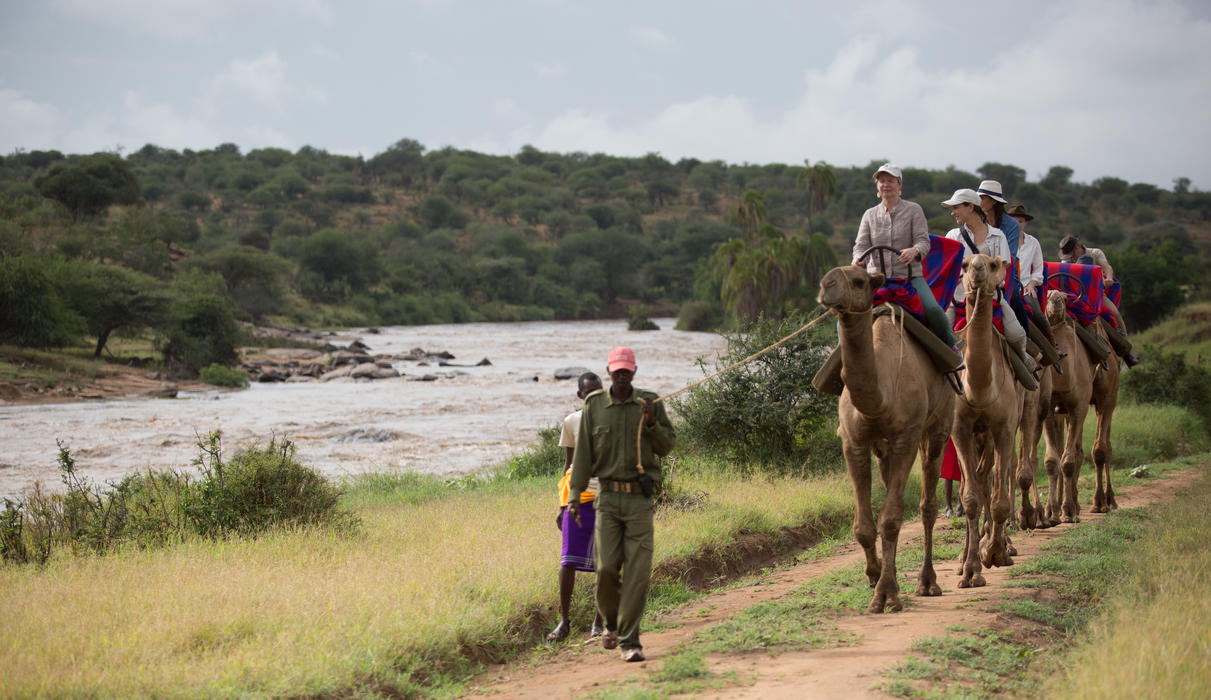 Camel-trekking along the Ewaso Nyiro river in Loisaba
