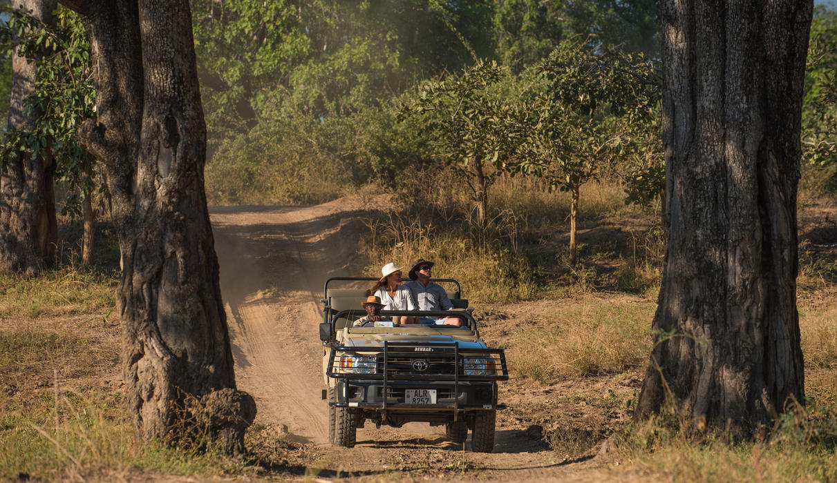 Game drive experiences