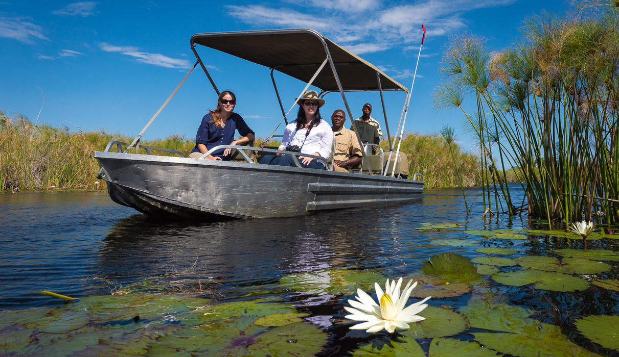 Boating through the Okavango provides views of waterlilies and reeds