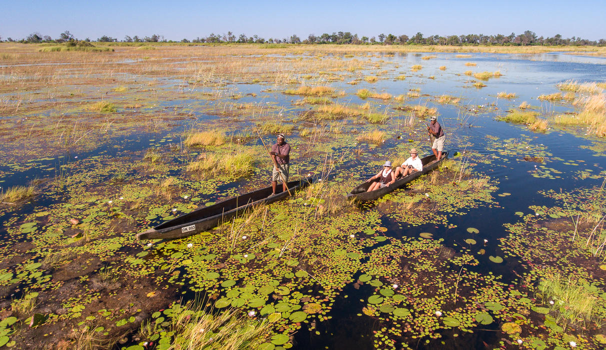 Poling across an Okavango floodplain in a traditional mokoro