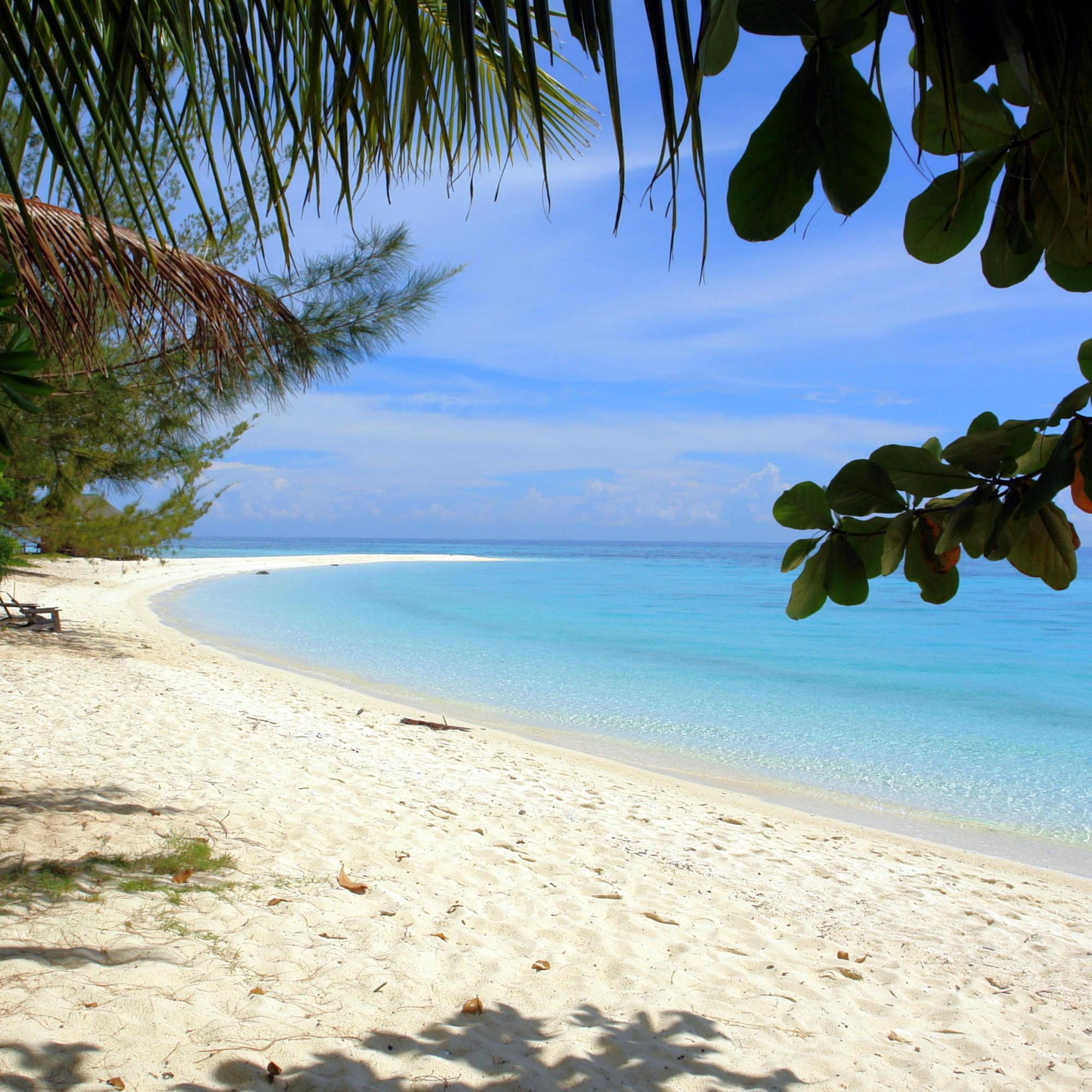 Lankayan Island: Uniek Sabah, Borneo