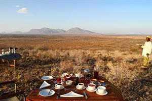 Image result for safari breakfast