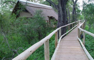 Rhino Post Safari Lodge - Walkways