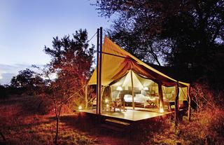Rhino Walking Safaris Plains Camp Tent