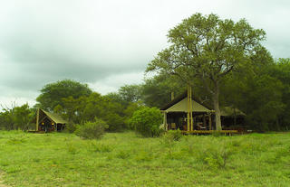 Rhino Walking Safaris - Plains Camp