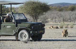 Ongava Game Reserve - game drive