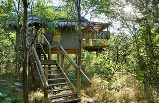 Treetop Chalet