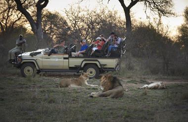 Game drives in the Kapama Private Game Reserve
