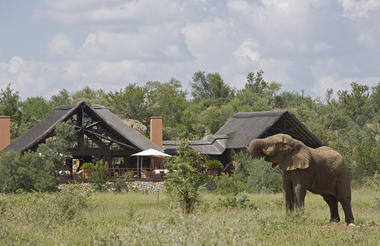 Viewing Deck with Elephant