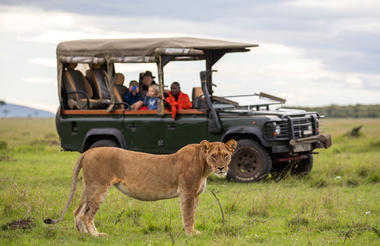 Exclusive use safari car