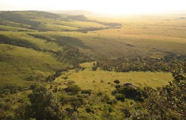 The vast Mara plains