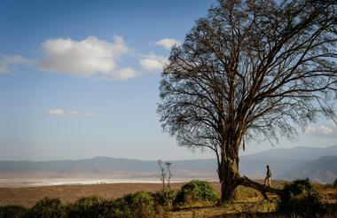 View from Entamanu Ngorongoro