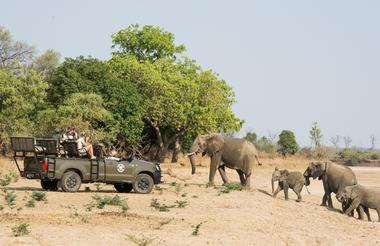 Amazing Game Drives