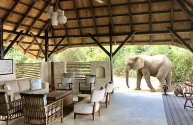 New lounge and decor at Chiawa Camp for 2018